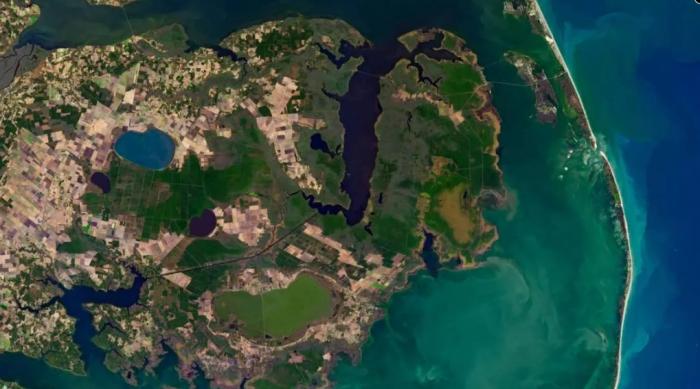"""研究人員稱""""幽靈森林""""排放的溫室氣體促使地球變暖"""